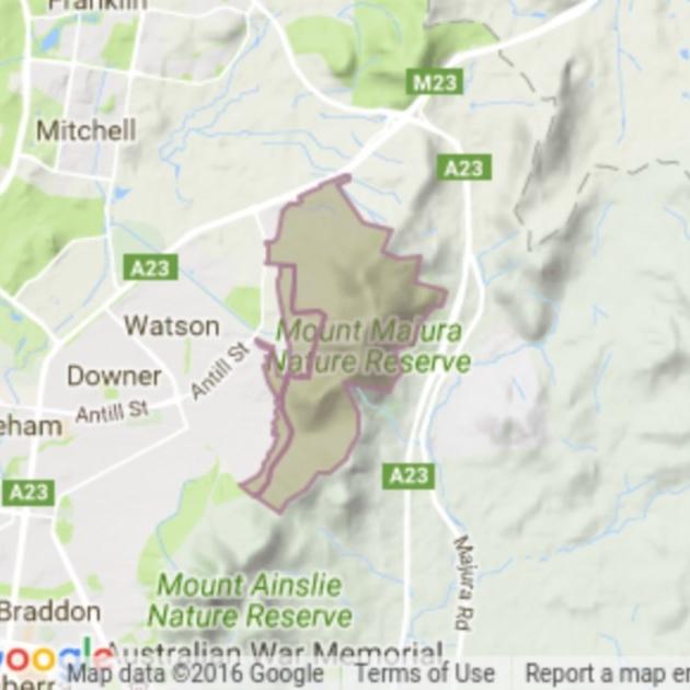 Mount Majura field guide