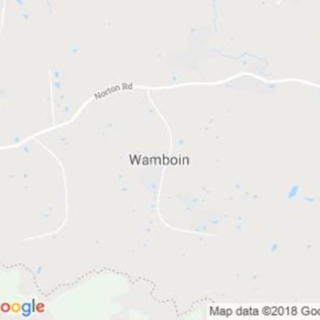 Wamboin, NSW field guide