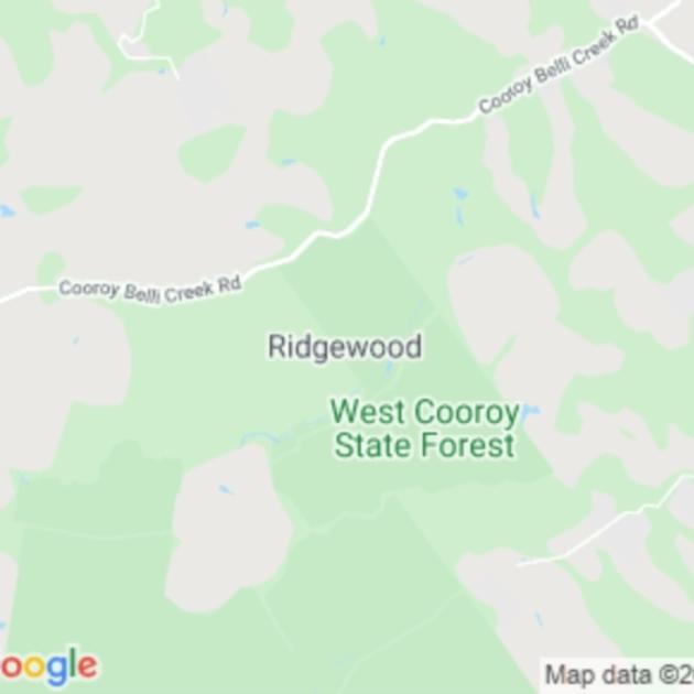 Ridgewood, QLD field guide