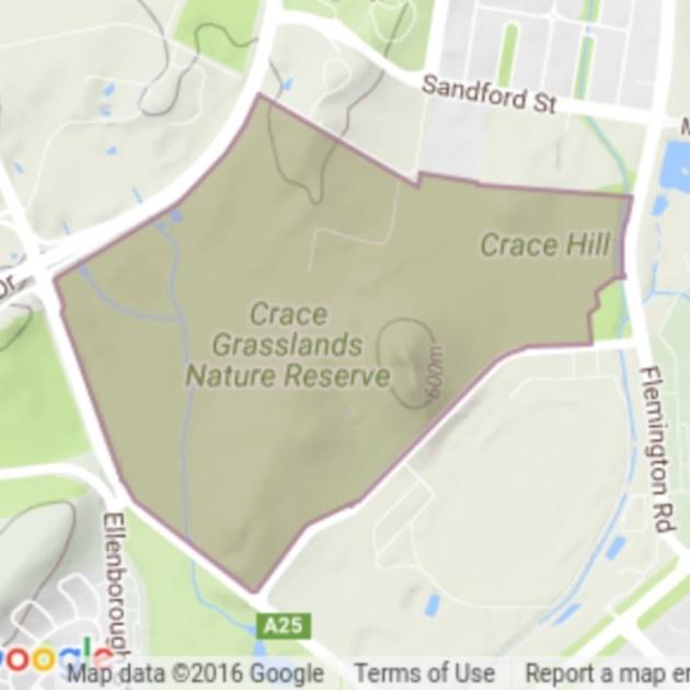 Crace Grasslands field guide