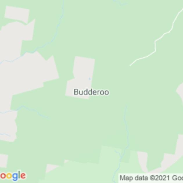 Budderoo, NSW field guide