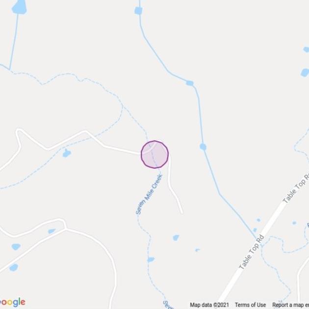 Monitoring Site 042 - Riparian