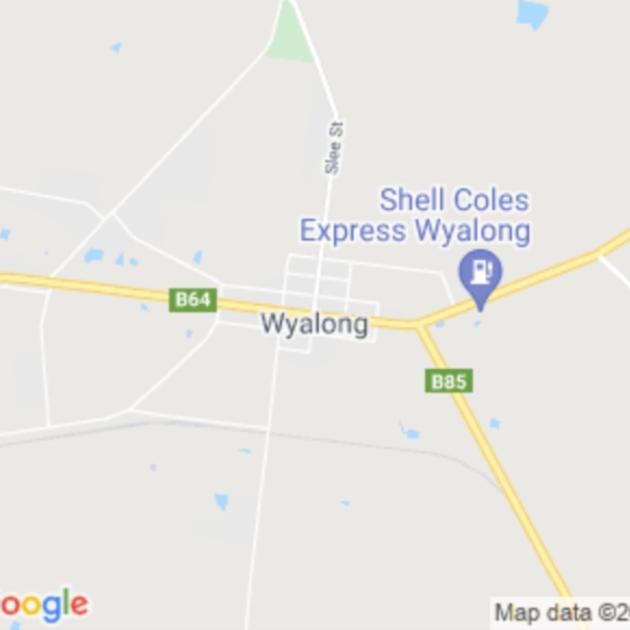 Wyalong, NSW field guide