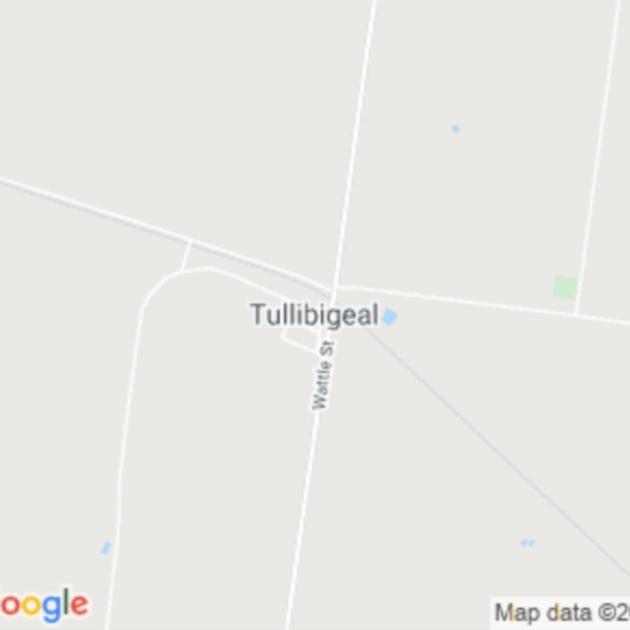 Tullibigeal, NSW field guide