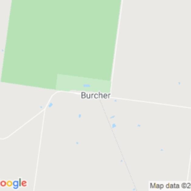 Burcher, NSW field guide