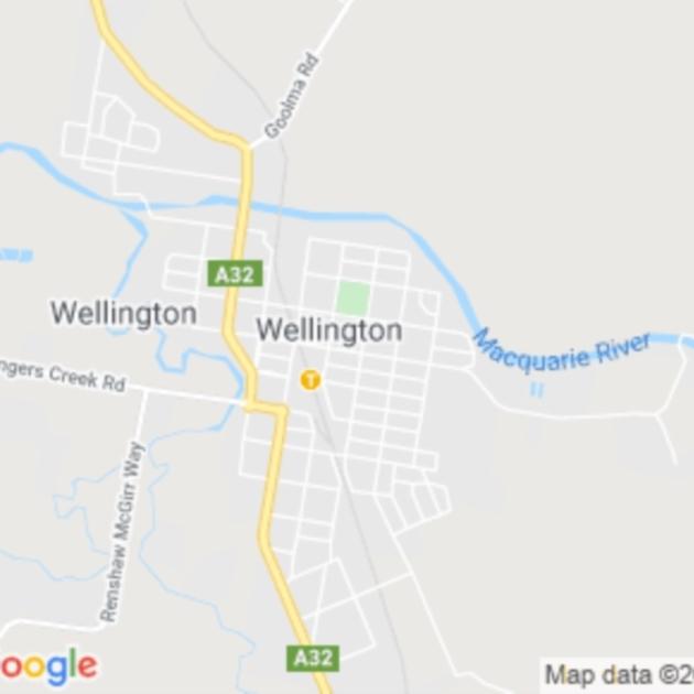 Wellington, NSW field guide