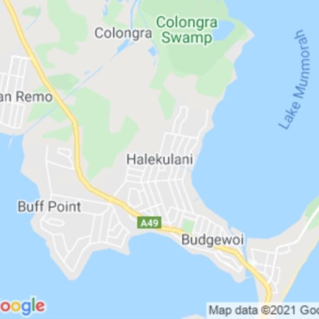 Halekulani, NSW field guide