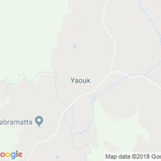 Yaouk, NSW field guide