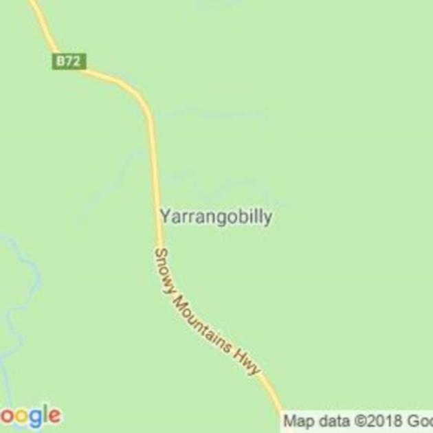 Yarrangobilly, NSW field guide