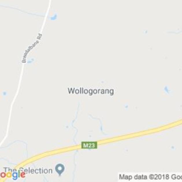 Wollogorang, NSW field guide