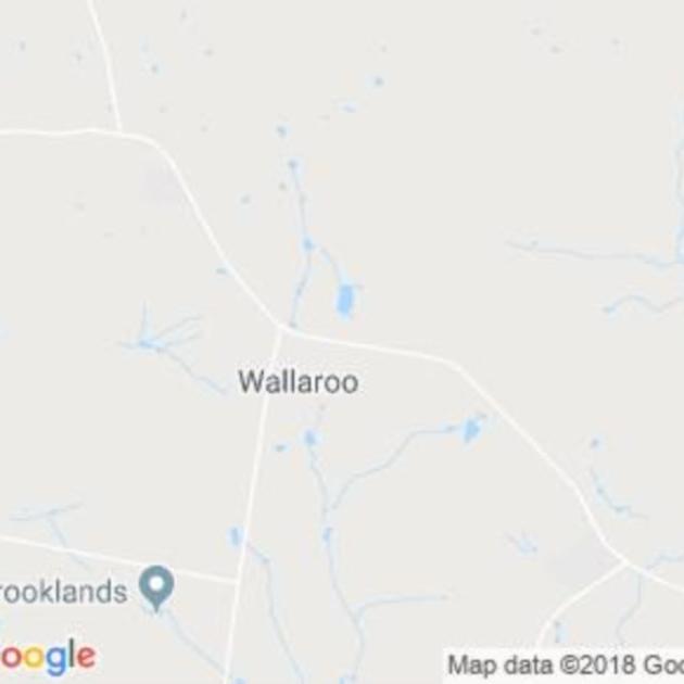 Wallaroo, ACT field guide