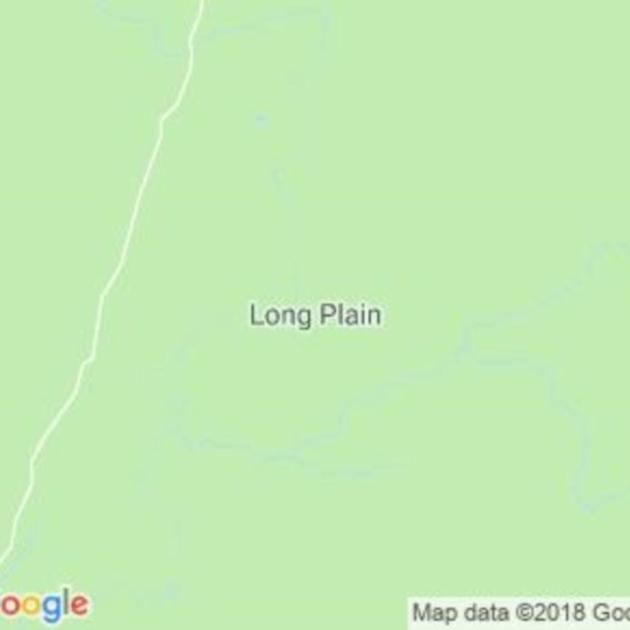 Long Plain, NSW field guide