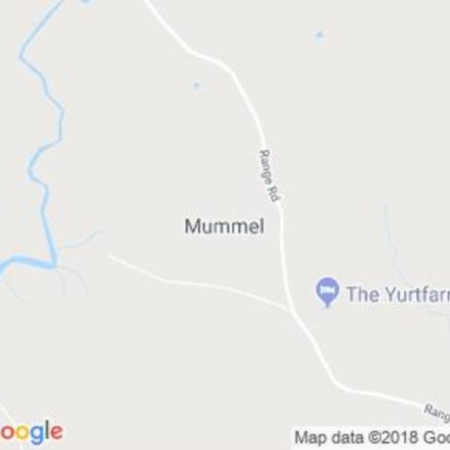 Mummel, NSW field guide