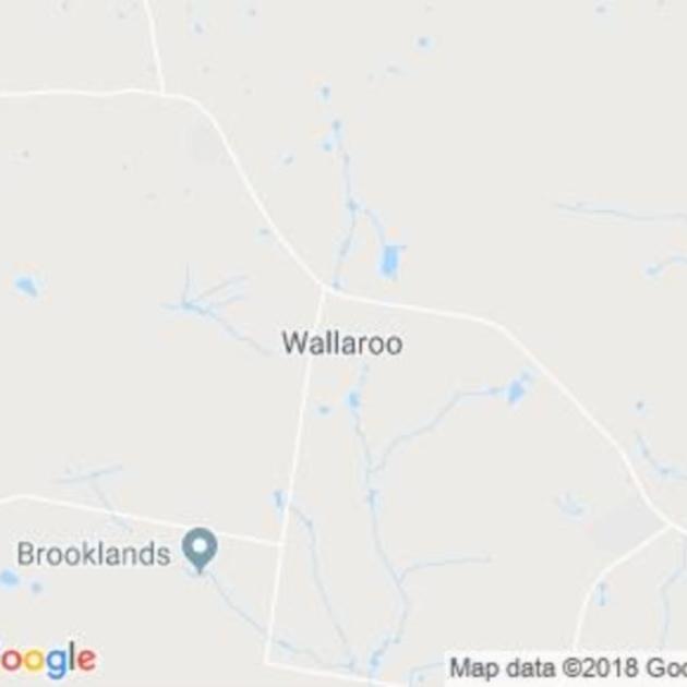 Wallaroo, NSW field guide