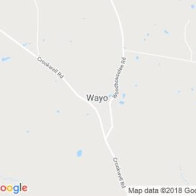 Wayo, NSW field guide