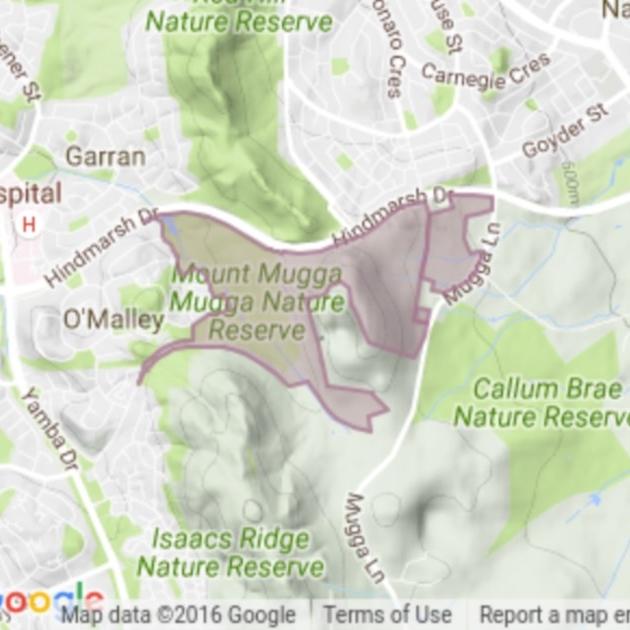 Mount Mugga Mugga field guide