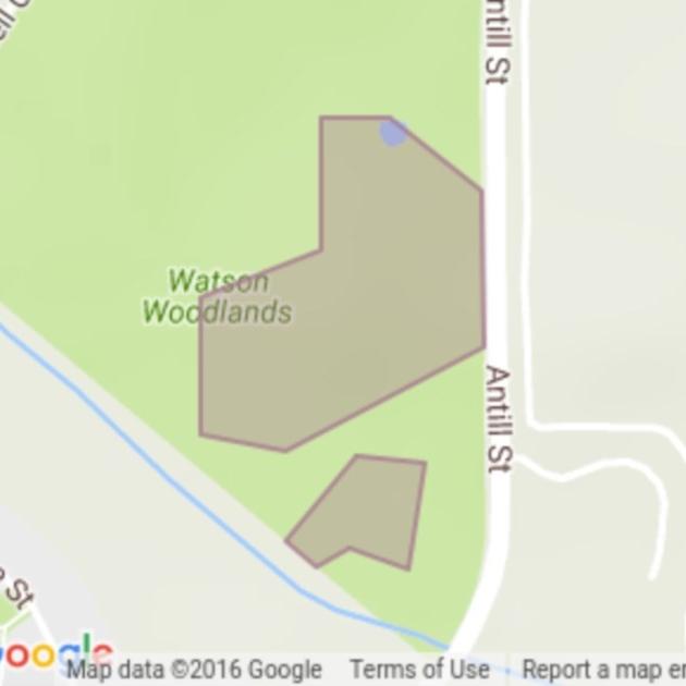 Watson Woodlands field guide