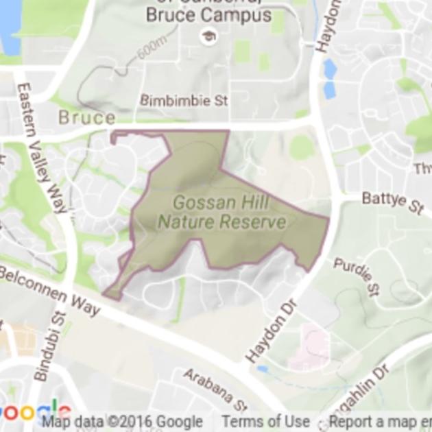 Gossan Hill field guide