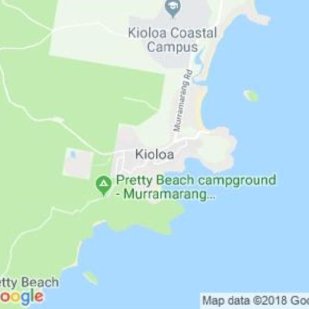 Kioloa, NSW field guide