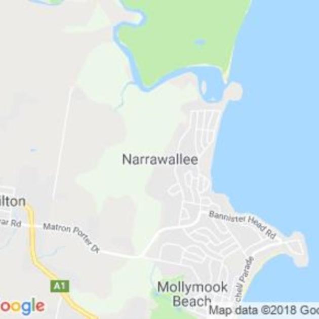 Narrawallee, NSW field guide