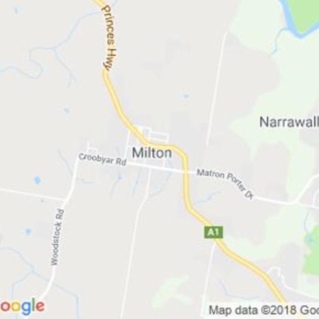 Milton, NSW field guide