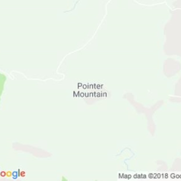 Pointer Mountain, NSW field guide