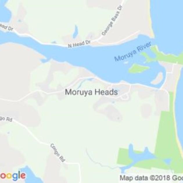 Moruya Heads, NSW field guide