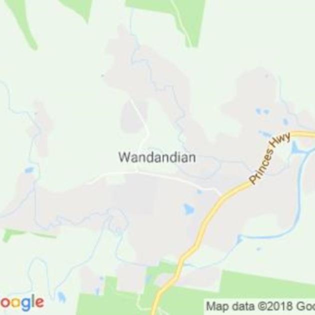 Wandandian, NSW field guide