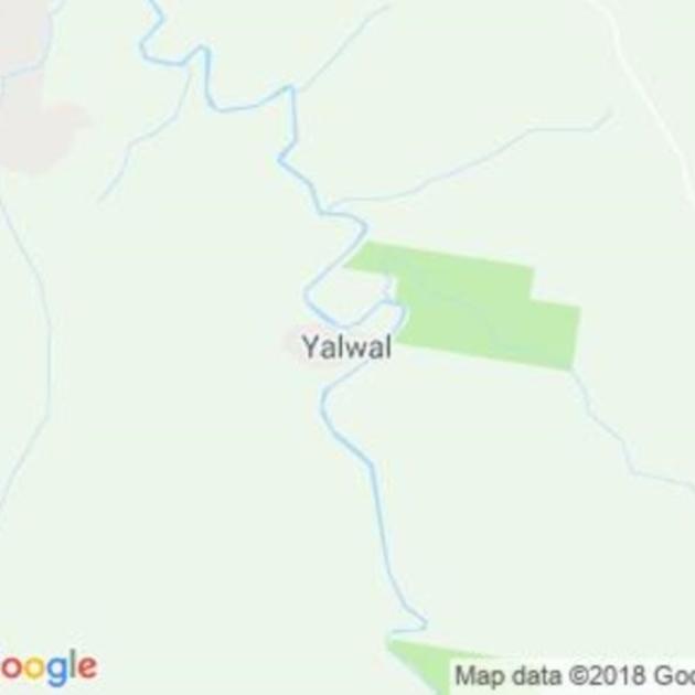 Yalwal, NSW field guide