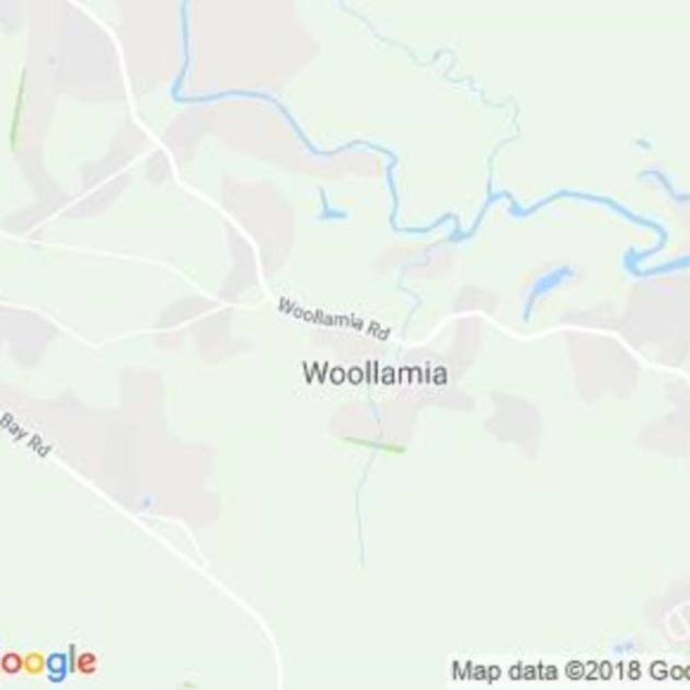 Woollamia, NSW field guide