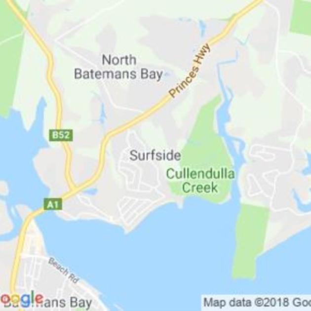 Surfside, NSW field guide
