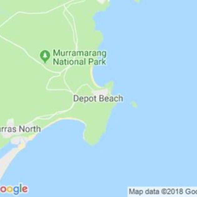 Depot Beach, NSW field guide