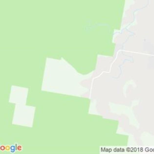 Mount Kingiman, NSW field guide