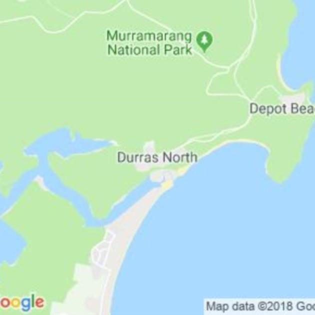 Durras North, NSW field guide