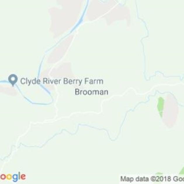 Brooman, NSW field guide