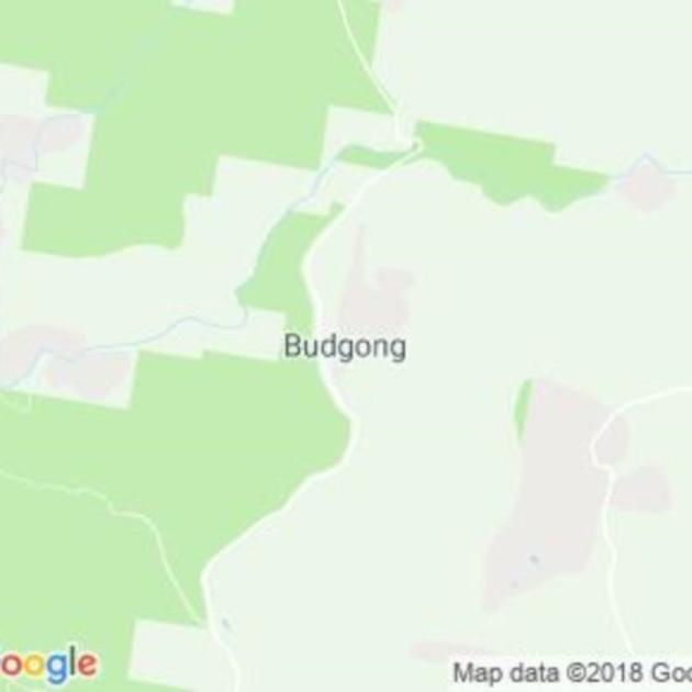 Budgong, NSW field guide