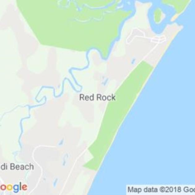 Red Rocks, NSW field guide
