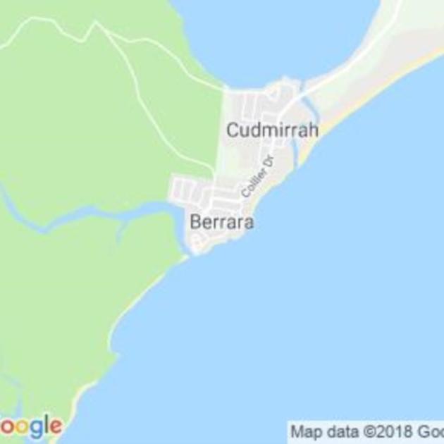 Berrara, NSW field guide