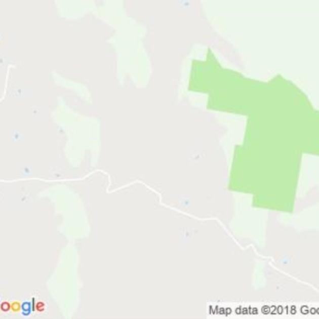 Forbes Creek, NSW field guide