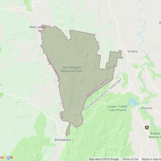 Brindabella National Park field guide