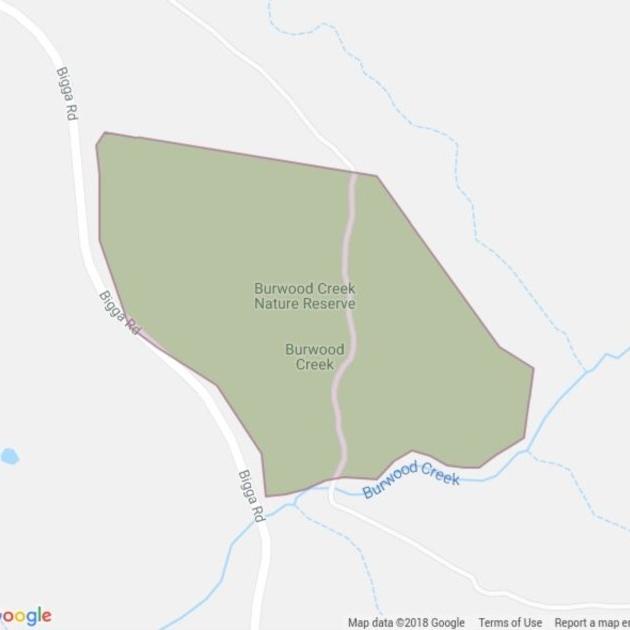 Burwood Creek Nature Reserve field guide