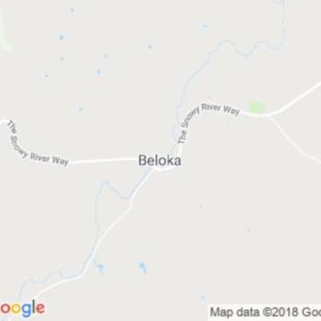 Beloka, NSW field guide