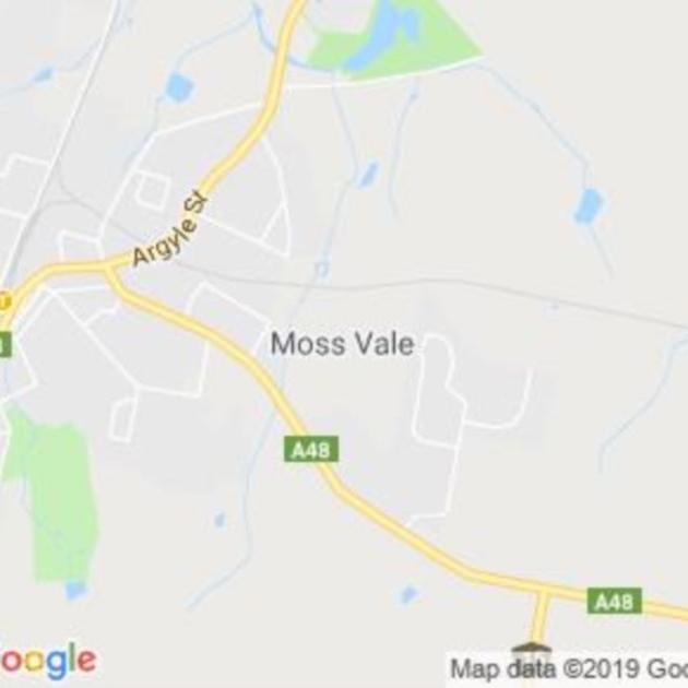 Moss Vale, NSW field guide