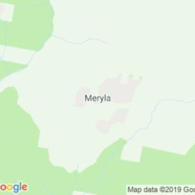 Meryla, NSW field guide