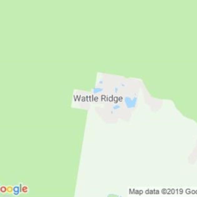 Wattle Ridge, NSW field guide