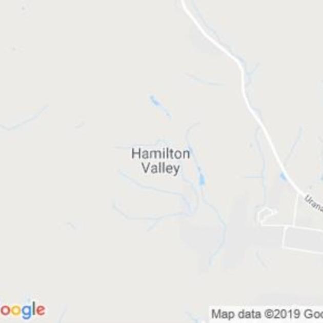 Hamilton Valley, NSW field guide
