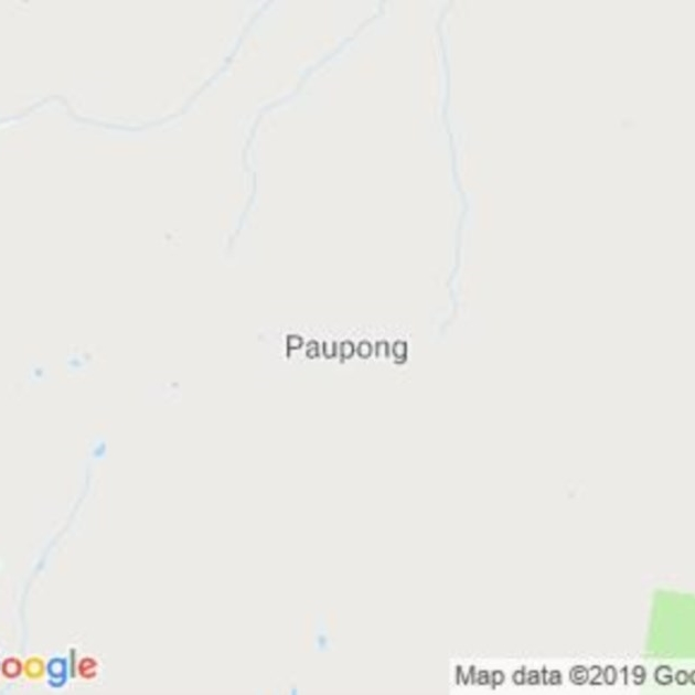 Paupong, NSW field guide