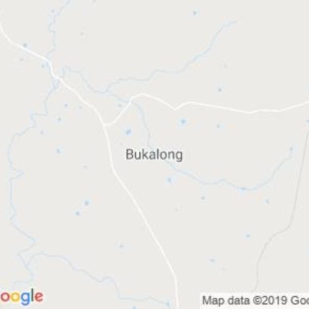 Bukalong, NSW field guide