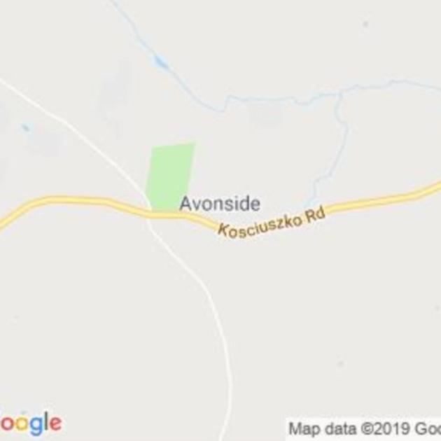 Avonside, NSW field guide