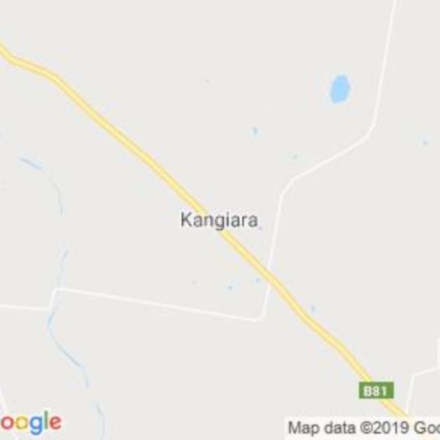 Kangiara, NSW field guide